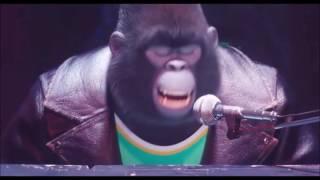 Zpívej - Johny
