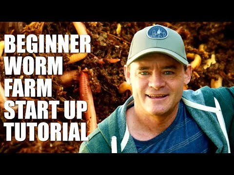 , title : 'Beginner Worm Farm How to Start and Set Up