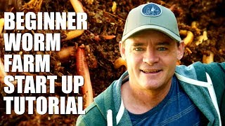 Beginner Worm Farm How to Start and Set Up
