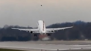 Bird and Turkish A320 on collision course - Pilot reacts quickly