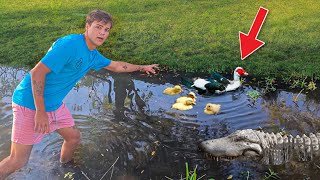 SAVING MOTHER DUCK & 5 DUCKLING from DEATH!!