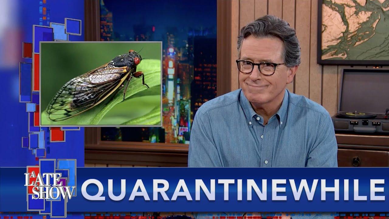 Quarantinewhile... Can You Trip Off Shroom-Infected Cicadas? thumbnail