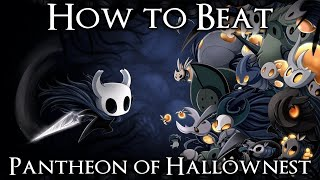 How to Beat the Pantheon of Hallownest with Walkthrough Commentary