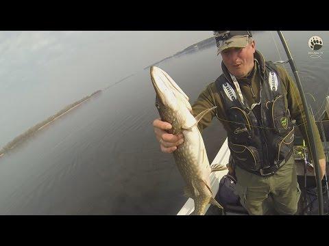 дельта роси рыбалка