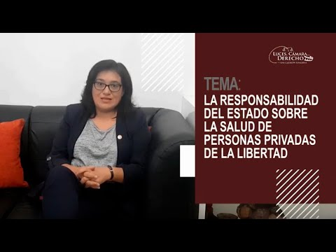 RESPONSABILIDAD DEL ESTADO POR LA SALUD DE PERSONAS PRIVADAS DE SU LIBERTAD Luces Cámara Derecho 168