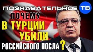 Почему в Турции убили российского посла? (Познавательное ТВ, Артём Войтенков)