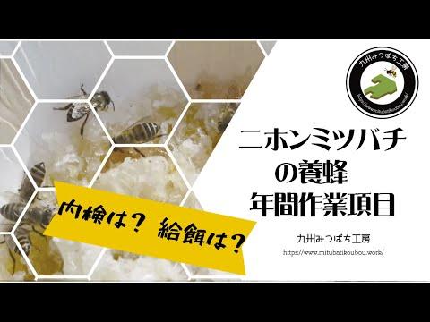 , title : '【ニホンミツバチ養蜂】日本みつばちの養蜂 年間作業項目 How to Beekeeping