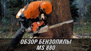 Бензопила STIHL MS 880 36