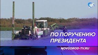 По поручению Президента начались работы по очистке устья реки Ловать