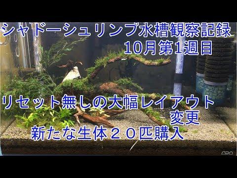 【週刊】大幅なレイアウト変更【初心者】