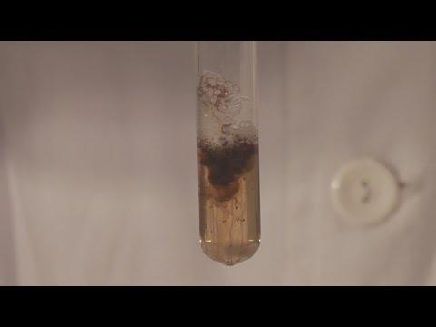 Parazita betegsegek laboratoriuma