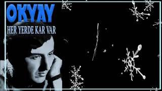 Okyay / Her Yerde Kar Var