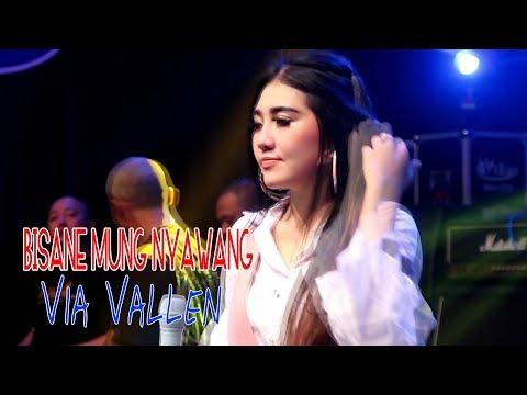 , title : 'Via Vallen - Bisane Mung Nyawang [OFFICIAL]'