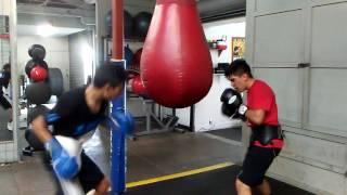 Boxing Hill Gym Long Beach Ca