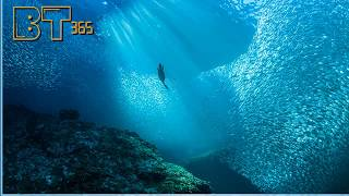 পানির নিচে গোপন অষ্টম মহাদেশ  জিল্যান্ডিয়া ।  Panir Niche Notun Mohadesh 8th continent