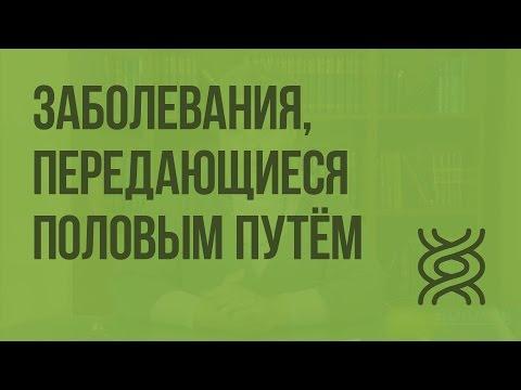 Наследственные и врождённые заболевания. Заболевания, передающиеся половым путём