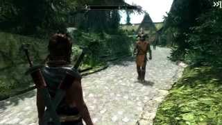 Skyrim-Installing Dual Sheath Redux and Immersive Animations.