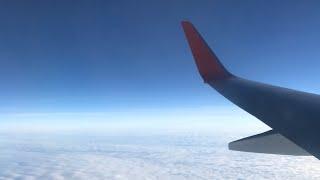 VLOG:путешествие с реборном/летим домой/ с реборном в самолёте/ РЕЗАЛИ КУКЛУ?/встреча сестричек😌