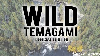 Wild Temagami