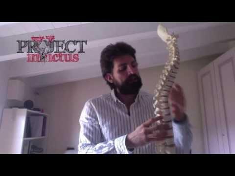 Il collo e larea di una pala fanno male