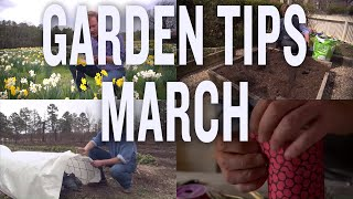 March Garden Tips And Projects: P. Allen Smith (2019)