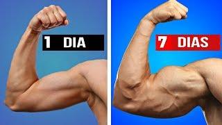 Download Video TOP 05 MANERAS DE AUMENTAR TUS BICEPS MP3 3GP MP4