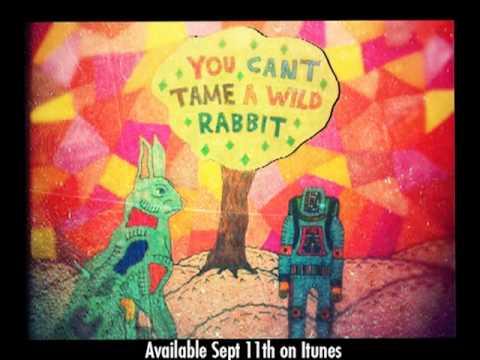 "MATAS ""You Can't Tame A Wild Rabbit"" First Teaser."