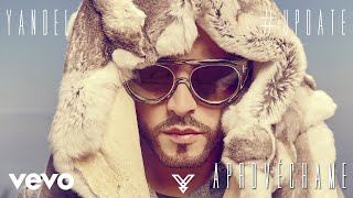 Aprovéchame (Audio) - Yandel (Video)