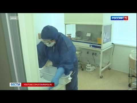 Роспотребнадзор ограничил срок выполнения теста на коронавирус
