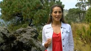 D Todo - San Miguel de Allende, Charco del ingenio