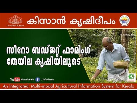 Zero Budget Farming - Tea Cultivation and Green Tea Processing