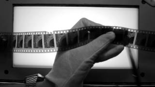 Aparajito - Trailer