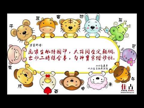 【虎】2019己亥年十二生肖流年運程︱方榮主講