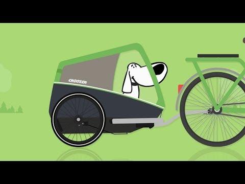 So gewöhnst Du Deinen Hund Schritt für Schritt an seinen Fahrradanhänger!
