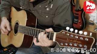 12-ти струнная акустическая гитара JAMES NELIGAN NA30