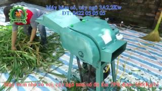 Máy băm thân ngô (bắp) - máy băm cỏ voi