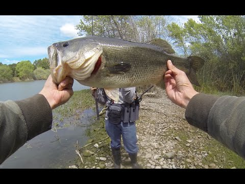 4.7lb Bass at Local San Jose Pond – 4.2014