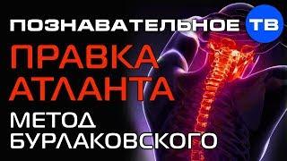 Правка атланта: метод Бурлаковского (Познавательное ТВ, Илья Бурлаковский)
