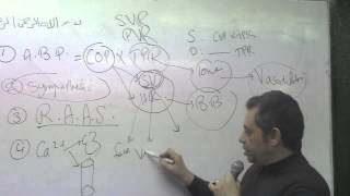 33.Dr. Ahmed Abdelrahman [Hypertension: RAAS]