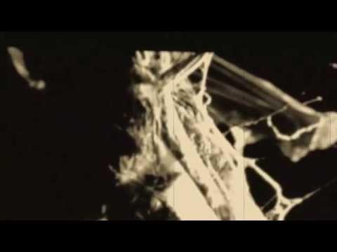 Zatokrev - Zatokrev - Swallow The Teeth