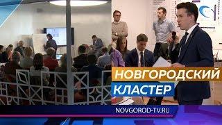 В регионе формируются 4 кластера с центрами в Боровичах, Великом Новгороде, Валдае и Старой Руссе