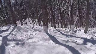 白馬コルチナ バックカントリー  山頂からダムまで