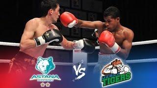 Бокс Astana Arlans vs Uzbek tigers Всемирная серия-2016 / Boxing Worlds Kazakhstan vs Uzbekistan