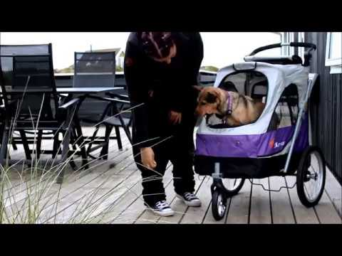 Zusatzvideo 1: Der neue Hundebuggy - Alltagstraining