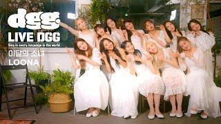 """이달의 소녀 (LOONA) """" Dance On My Own """" (Live Performance)   LIVE DGG"""