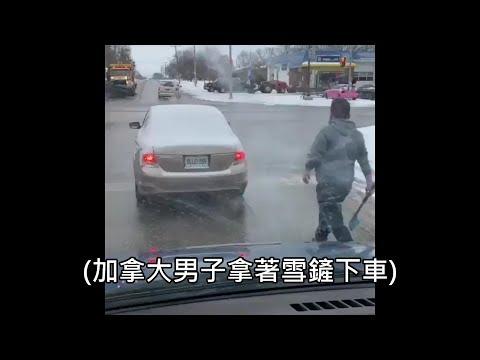 加拿大的行車糾紛影片瘋傳,網友狂讚「可以,這很加拿大」