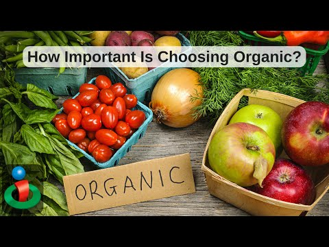 Choose Organic or Not? Listen to This Doctor's Suggestion!