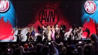 Too Short - I Need  A Porno Bitch (2012 AVN Awards LIVE) - (KASH KROP)