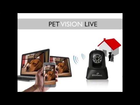Eyenimal Pet Vision Live HD Video