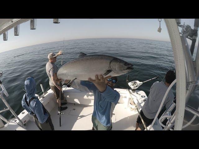 Raw Salmon Fishing Strikes (Triple headers)